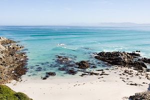 Safari Club - Gansbaai, Western Cape a