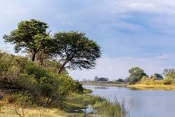 Safari Club Region - Namibia Caprivi Strip