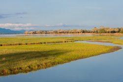 Safari Club Region - Zimbabwe Zambezi River