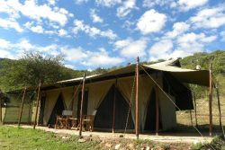 Safari Club Entry Accommodation - Enkewa-Mara-Camp