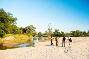 Safari Club Tours - The_Luangwa_Trails