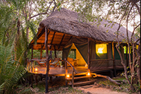 Safari Club Classic Accommodation - Kaingu Safari Lodge