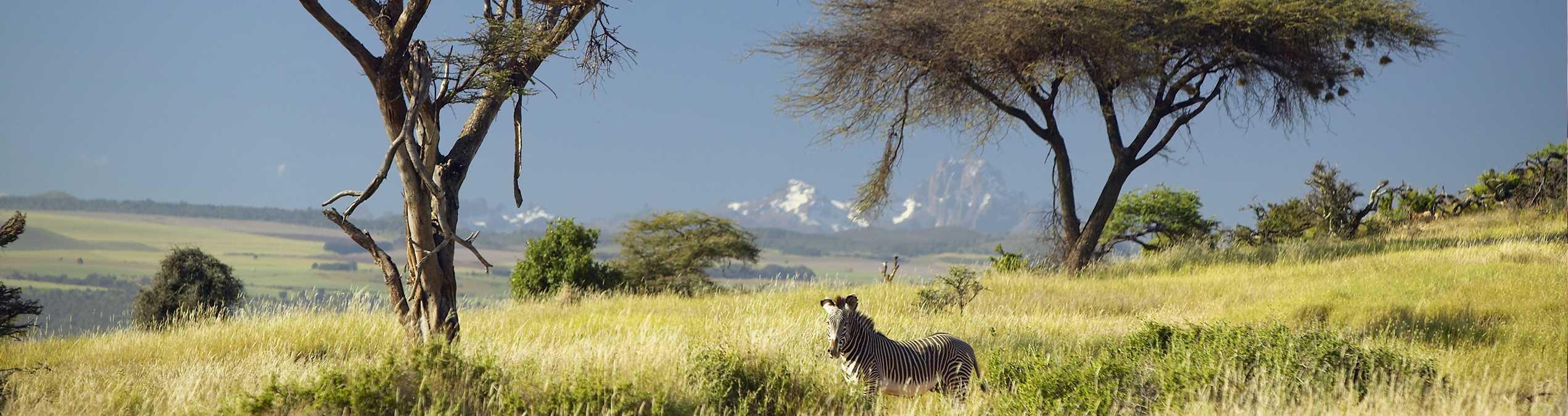 Safari Club - Kenya_Lewa Downs