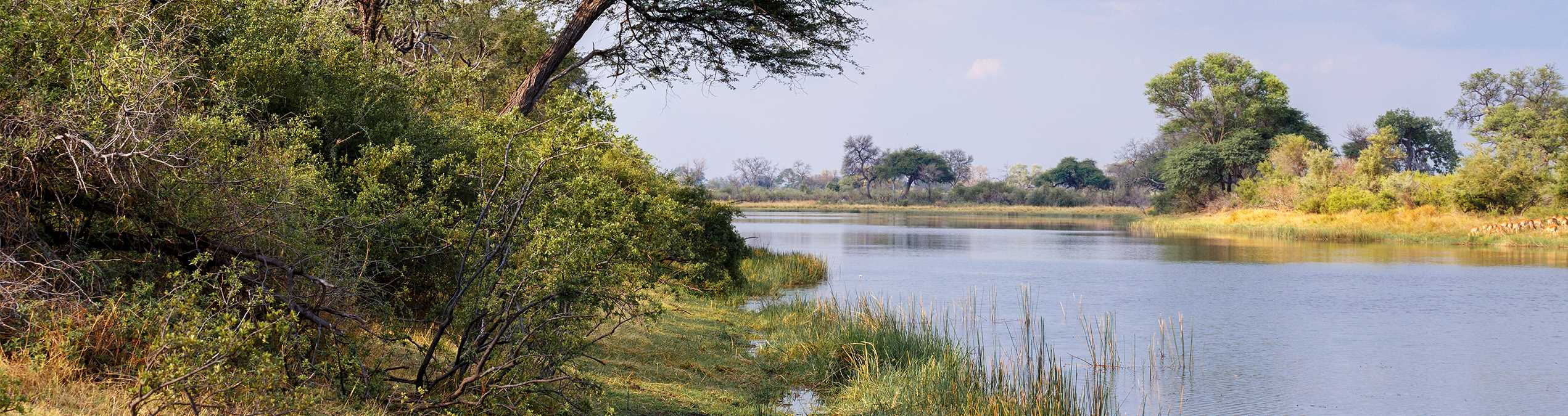 Safari Club - Namibia_Caprivi_Strip