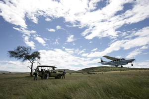 Safari Club - Wings_over_the_Serengeti