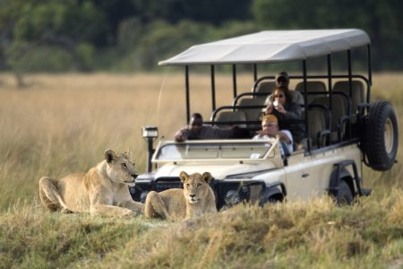 Safari Club - 4×4 Game Drive