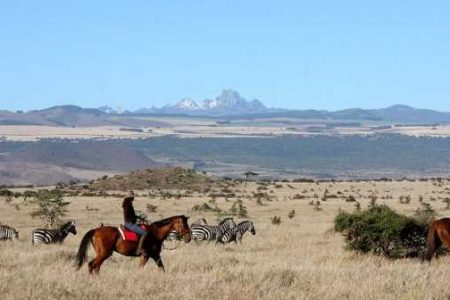 Safari Club - Horse-riding with plains game