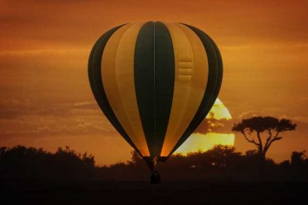 Safari Club - Hot-Air Balloon