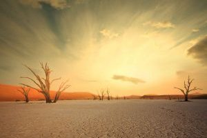 Safari Club - Experience Namibia Escorted Tour Premium