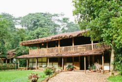 Safari Club Entry Accommodation - Buhoma-Lodge-Uganda