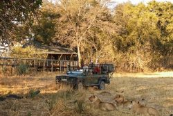 Safari Club Classic Accommodation - Chitabe_Camp_Wilderness_Safaris