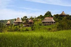 Safari Club Premium Accommodation - Clouds-Mountain-Gorilla-Lodge-Uganda