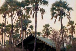 Safari Club Premium Accommodation - Jacks_Camp