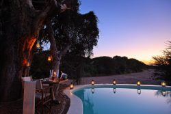 Safari Club Premium Accommodation - Jongomero