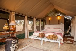 Safari Club Premium Accommodation - Kuro_Tarangire_Camp