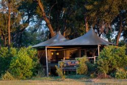 Safari Club Classic Accommodation - Little_Vumbura_Wilderness_Safaris