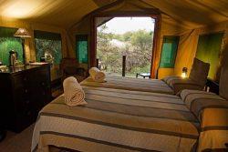 Safari Club Classic Accommodation - Mashatu_Tented_Camp