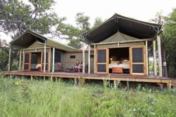 Safari Club Classic Accommodation - Motswiri_Camp