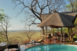 Safari Club Entry Accommodation - Muchenje_Safari_Lodge