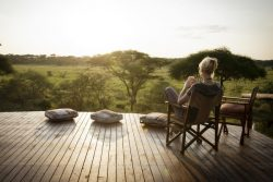 Safari Club Premium Accommodation - Oliver's_Camp