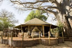 Safari Club Premium Accommodation - Sanctuary_Swala_Camp