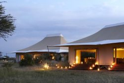 Safari Club Premium Accommodation - Sayari_Camp