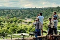 Safari Club Classic Accommodation - Tarangire_Safari_Lodge