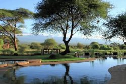 Safari Club Premium Accommodation - Tawi_Lodge