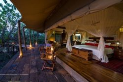 Safari Club Premium Accommodation - Zarafa_Camp