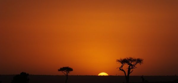 Safari Club - African sun-set Kenya