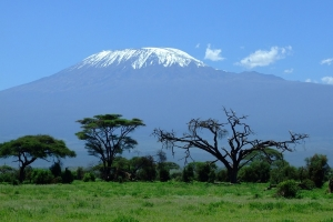 Safari Club - amboseli-mt-kilimanjaro