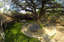 Safari Club Premium Accommodation - Camelthorn_Lodge