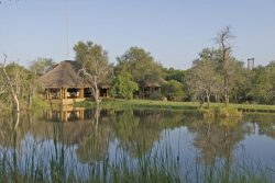 Safari Club Premium Accommodation - Camp_Jabulani