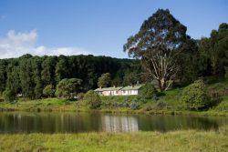 Safari Club Entry Accommodation - Chelinda Camp