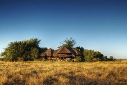 Safari Club Classic Accommodation - Chobe_Savanna_Lodge