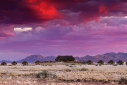 Safari Club Entry Accommodation - Desert_Homestead_Lodge