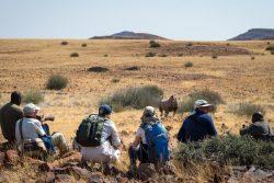 Safari Club Premium Accommodation - Desert_Rhino_Camp