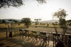 Safari Club Classic Accommodation - Dunia_Camp