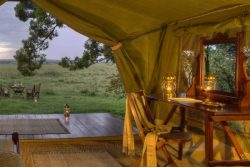 Safari Club Classic Accommodation - Elephant_Pepper_Camp