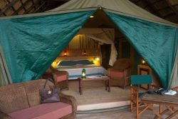 Safari Club Entry Accommodation - Flatdogs_Camp
