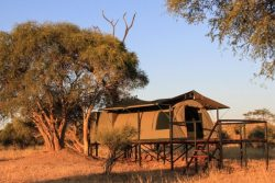 Safari Club Entry Accommodation - Jozibanini_Camp