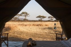 Safari Club Entry Accommodation - Kati_Kati_Tented_Camp