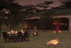Safari Club Classic Accommodation - Kicheche_Bush_Camp