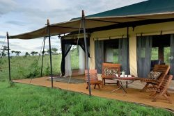 Safari Club Entry Accommodation - Kiota_Camp