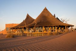 Safari Club Premium Accommodation - Little_Kulala_Wilderness_Safaris