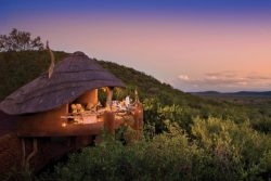 Safari Holidays & Tours - Madikwe Safari Lodge