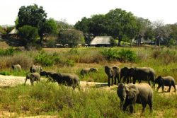 Safari Club Premium Accommodation - MalaMala_Main_Camp