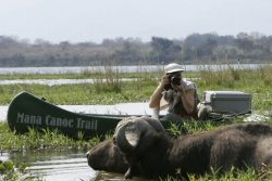 Safari Club Classic Accommodation - Mana_Canoe_Trails