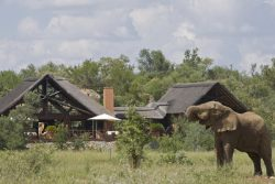 Safari Holidays & Tours - Mateya Safari Lodge