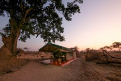 Safari Club Entry Accommodation - Mdonya_Old_River_Camp